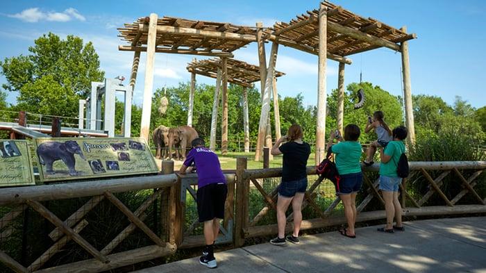 Adventure Road Oklahoma City Zoo & Botanical Garden